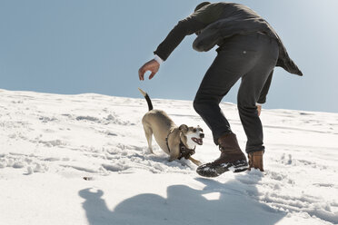 Man playing with dog in winter, having fun in the snow - REAF00268