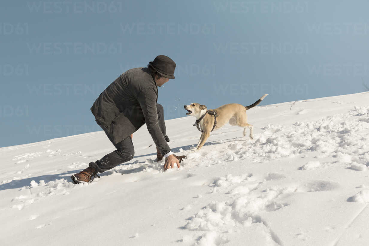 Man playing with dog in winter, throwing snow - REAF00277 - realitybites/Westend61