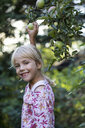 Portrait of laughing girl picking apple from tree - JFEF00876