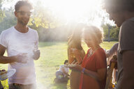 Adults friends eating and drinking at sunset party in park - CUF30027
