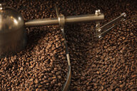 Close up of coffee beans in coffee grinder - CUF30761