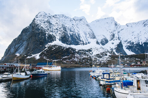 Fishing boats in harbour, Reine, Lofoten, Norway - ISF09677