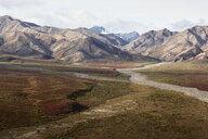 USA, Alaska, Denali National Park, Alaska Range in autumn - CVF00823