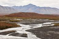 USA, Alaska, Denali National Park in autumn - CVF00829