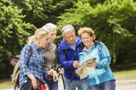 Group of friends, hiking, looking at map - CUF31652