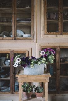 Fresh flowers in small zinc tub - ALBF00453