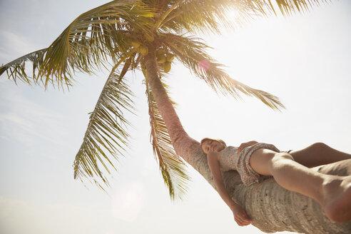 Girl leaning back on palm tree, Rawa Island Malaysia - ISF10044