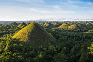 Chocolate hills, Bohol, Philippines - CUF32714