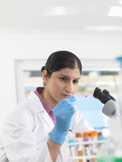 Young woman scientist viewing blood slide during clinical testing of medical samples in a laboratory - CUF33001