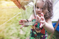 Grandfathers hand holding insect in jar for granddaughter - ISF10886