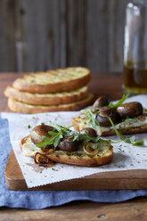 Still life of bruschetta with portobello mushroom roasted cipollini onion, gouda cheese and fresh arugula - ISF12002