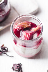 Vegan coconut pudding with rhubarb hibiscus syrup - SBDF03600