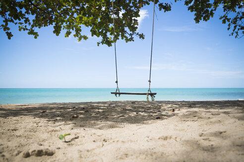 Thailand, Khao Lak, empty swing on the beach - CHPF00479