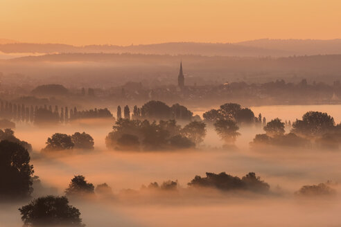 Germany, Constance district, Radolfzell and morning fog over Aachried - BSTF00137
