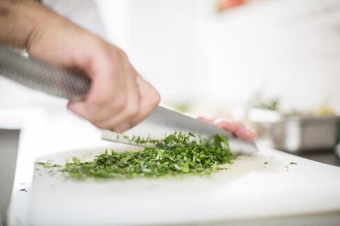 Cook chopping herbs - CVF00847