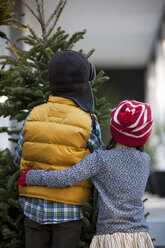 Girl and boy carrying christmas tree - ISF12907