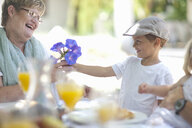 Boy giving flowers to grandmother - CUF33508