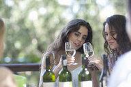 Young friends tasting wine at vineyard bar - CUF33601