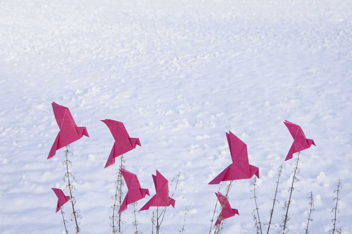 Origami birds sitting on grasses in winter - PSTF00133 - Petra Stockhausen/Westend61