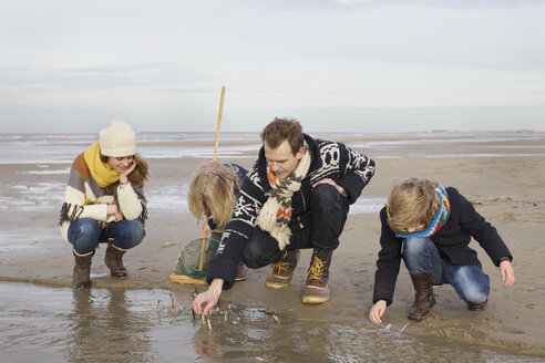 Mid adult parents with son and daughter searching for seashells on beach, Bloemendaal aan Zee, Netherlands - CUF34804