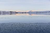 Ulfljotsvatn, Iceland - CUF35080