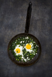 Shakshouka with baby spinat, chard, spring onions and basil in pan - LVF07154
