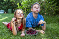 Portrait of brother and sister lying on a meadow spitting cherry pits - SARF03815