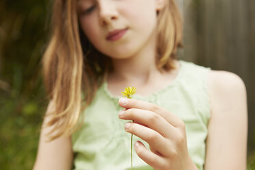 Cropped shot of girl with holding dandelion flower - CUF36914