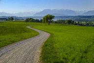 Germany, Bavaria, Upper Bavaria, Chiemgau, Rupertiwinkel, View from Bicheln, Tettenhausen and Waginger See, Berchtesgaden and Chiemgauer Alps - LBF01977