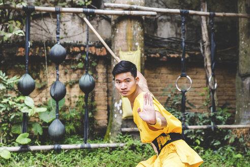 Vietnam, Hanoi, young man exercising Kung Fu - WPEF00539