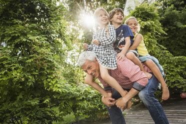 Grandfather carrying three grandchildren on back - CUF37838