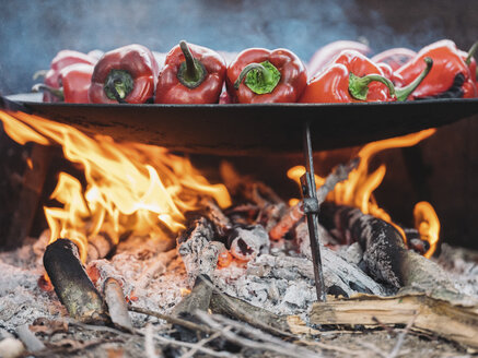 Red bell peppers on barbecue tray, fire - NOF00035
