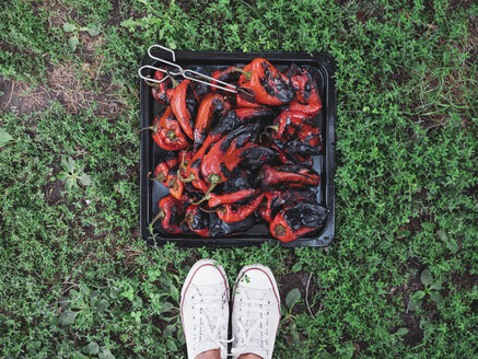 Grilled red bell peppers on a baking tray - NOF00038