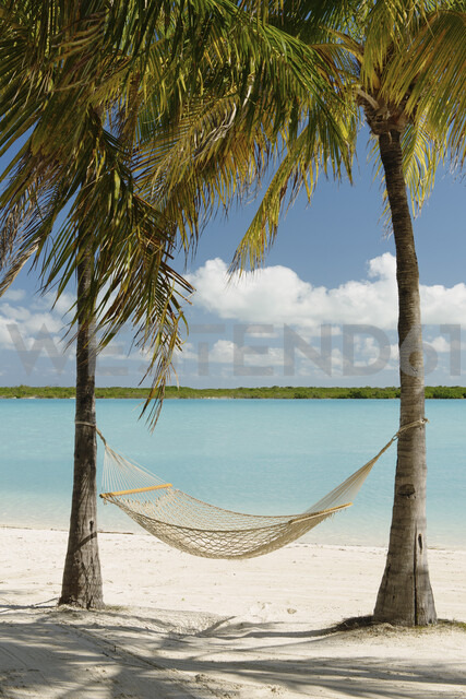Hammock between palm trees, Providenciales, Turks and Caicos Islands, Caribbean - ISF15081