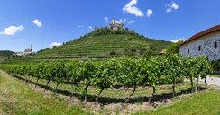 Austria, Lower Austria, Wachau, Kremstal, Senftenberg, Castle ruin Senftenberg - WWF04238