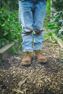 Legs of boy in dirty knee jeans on allotment - CUF38281