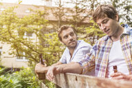 Two male adult friends chatting and drinking beer at garden fence - CUF38368