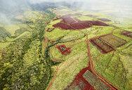 USA, Hawaii, Kauai, field landscape, aerial view - CVF00937