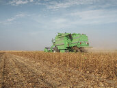 Serbia, Vojvodina, Combine harvester in soybean field - NOF00044