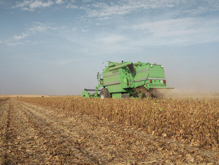 Serbia, Vojvodina, Combine harvester in soybean field - NOF00044