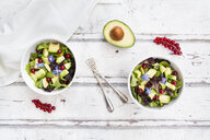 Mixed salad with avocado, red currants and borage blossoms - LVF07207