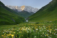 View of wildflower meadow and Shkhara mountain, Ushguli village, Svaneti, Georgia - CUF38890