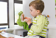 Boy playing with toy crocodile in dentists - CUF39428