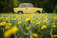 Vintage yellow car in field - CUF39580