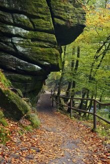 Czechia, Bohemian Switzerland, Ticha Souteska, hiking trail in the Edmundsklamm - RUEF01903