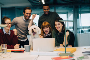 Excited business team with dog at desk in creative office - MASF08607
