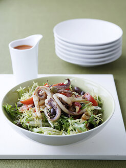 Plate of squid with endive salad - CUF40252