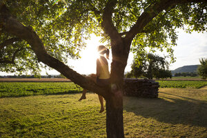 Silhouette of girl sitting on tree in summer at backlight - LVF07255