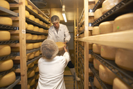 Workers putting cheese round for storage at farm factory - CUF41651