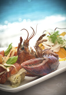 Still life of seafood platter with basil and dill garnish - CUF41712